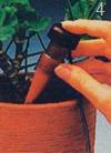 Автоматический полив балконных растений